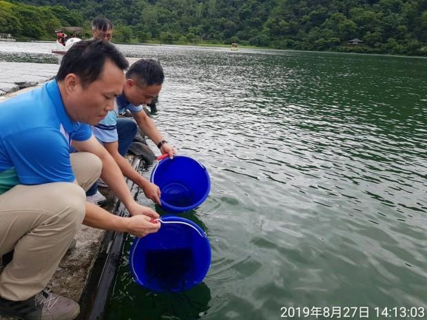 鯉魚潭水質改善新方法_190827_0003.jpg